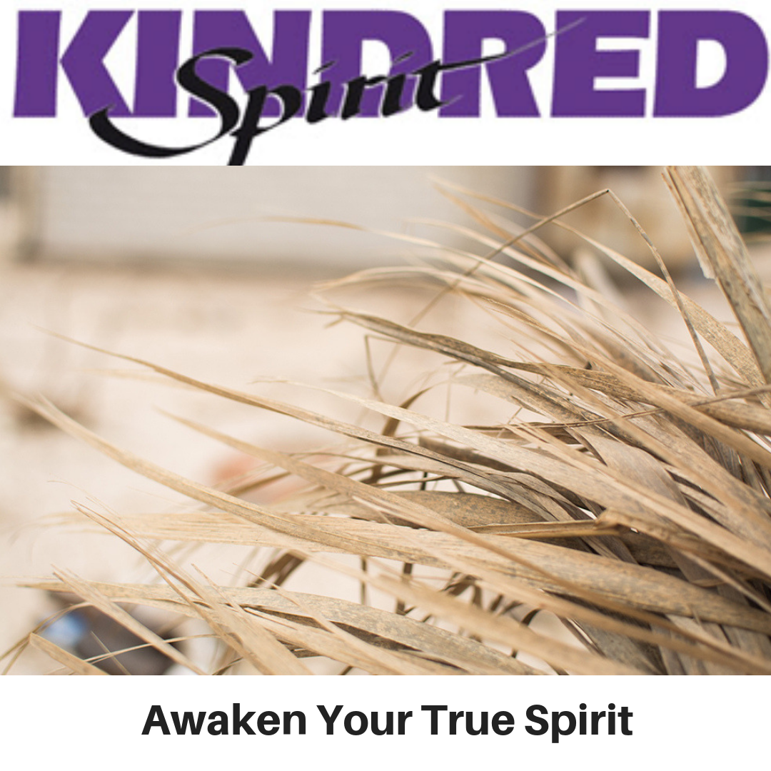 Kindred Spirit - Awaken Your True Spirit - Gina Battye