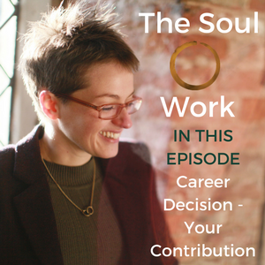 The Soul Work - Career Decision - Your Contribution