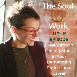 The Soul Work - Breakthrough Feeling Stuck In Your Demanding Professional Career